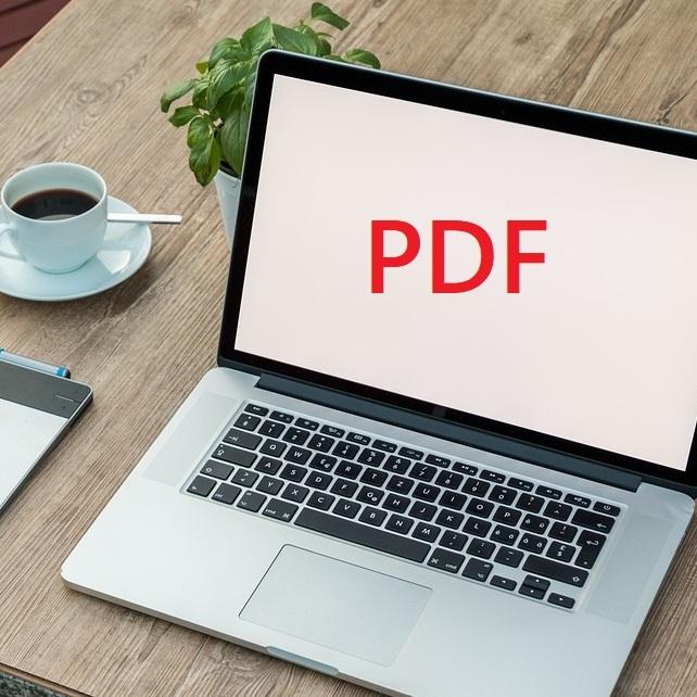 vba pdf text 変換